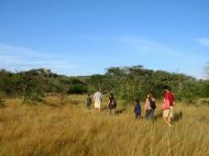Lake Mburo guided walks