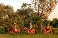 Lake Mburo horseback safaris